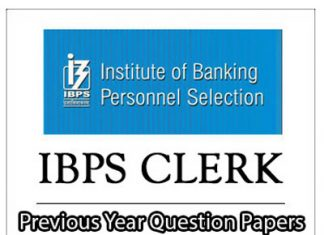 IBPS Clerk Previous Year Question Papers