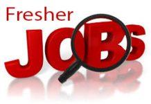Fresher Jobs