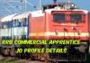 Commercial Apprentice Job Profile